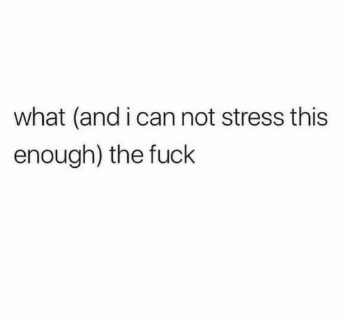 Fuck, Stress, and Can: what (and i can not stress this  enough) the fuck
