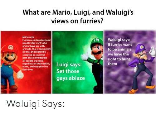 Animals, Sex, and Mario: What are Mario, Luigi, and Waluigi's  views on furries?  Mario says:  Furries are misunderstood  people who want to be  and/or have sex with  animals. This is completely  normal and should be  accepted as a normal  part of society because  all people are equal  (D <1  Waluigi says:  If furries want  to be animals  we have the  right to hunt  them  9  regardless of their beliefs,uigi says:  views, and way they live  their lives.  Set those  gays ablaze Waluigi Says: