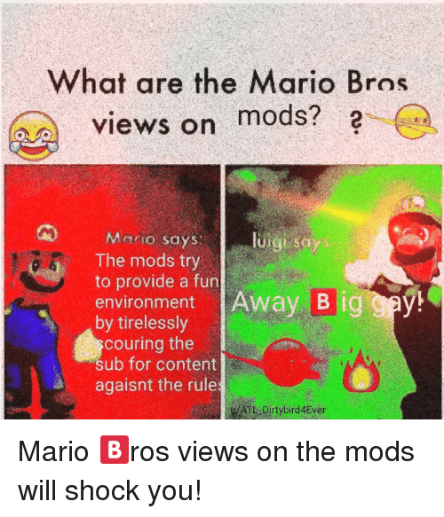 What Are The Mario Bros Views On 2 Mods The Mods Try To