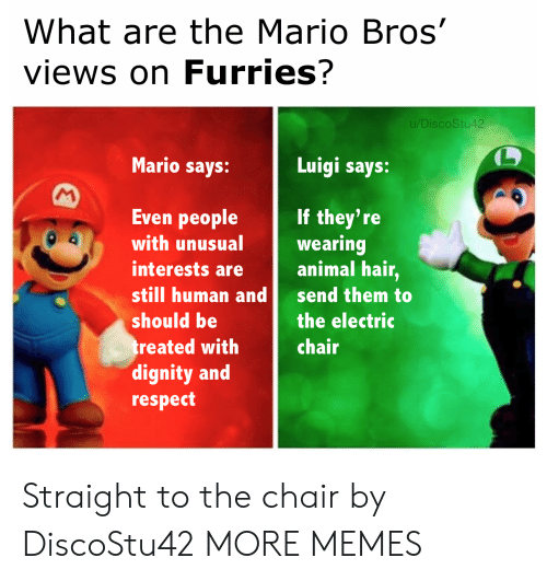 What Are The: What are the Mario Bros'  views on Furries?  u/DiscoStu42  Mario says:  Luigi says:  M  Even people  If they're  wearing  animal hair,  with unusual  interests are  still human and  send them to  should be  the electric  treated with  dignity and  respect  chair Straight to the chair by DiscoStu42 MORE MEMES