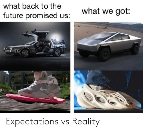 Promised: what back to the  what we got:  future promised us:  soles Expectations vs Reality