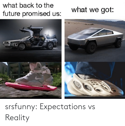 Promised: what back to the  what we got:  future promised us:  soles srsfunny:  Expectations vs Reality