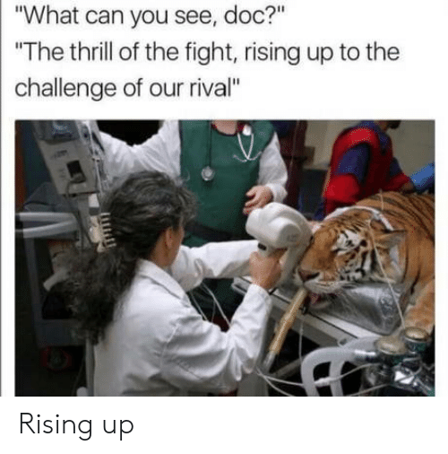 "Fight, Doc, and Can: ""What can you see, doc?""  The thrill of the fight, rising up to the  challenge of our rival"" Rising up"