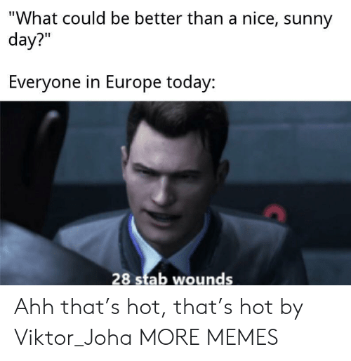 """Wounds: """"What could be better than a nice, sunny  day?""""  Everyone in Europe today:  28 stab wounds Ahh that's hot, that's hot by Viktor_Joha MORE MEMES"""