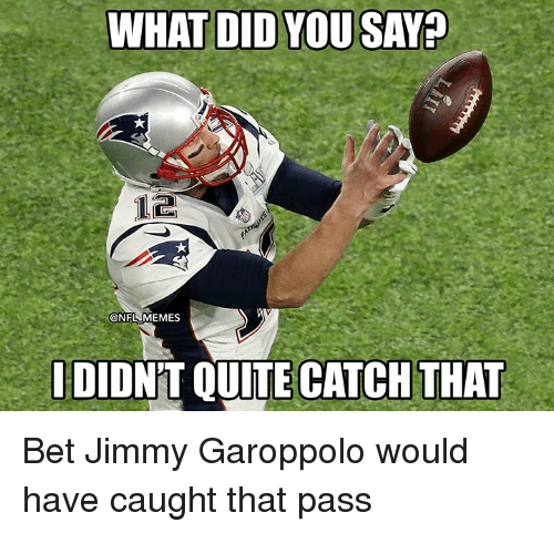 what did you say: WHAT DID YOU SAY  @NFL MEMES  DIONT QUITE CATCH THAT Bet Jimmy Garoppolo would have caught that pass