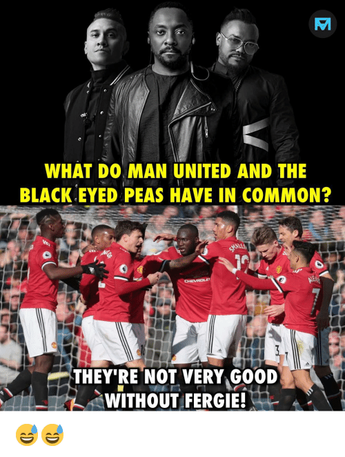 man united: WHAT DO MAN UNITED AND THE  BLACK EYED PEAS HAVE IN COMMON?  THEY'RE NOT VERY GOOD  WITHOUT FERGIE! 😅😅