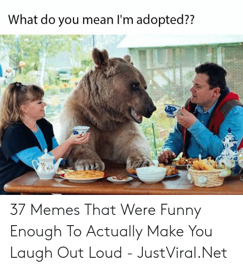 laugh out loud: What do you mean I'm adopted?? 37 Memes That Were Funny Enough To Actually Make You Laugh Out Loud - JustViral.Net
