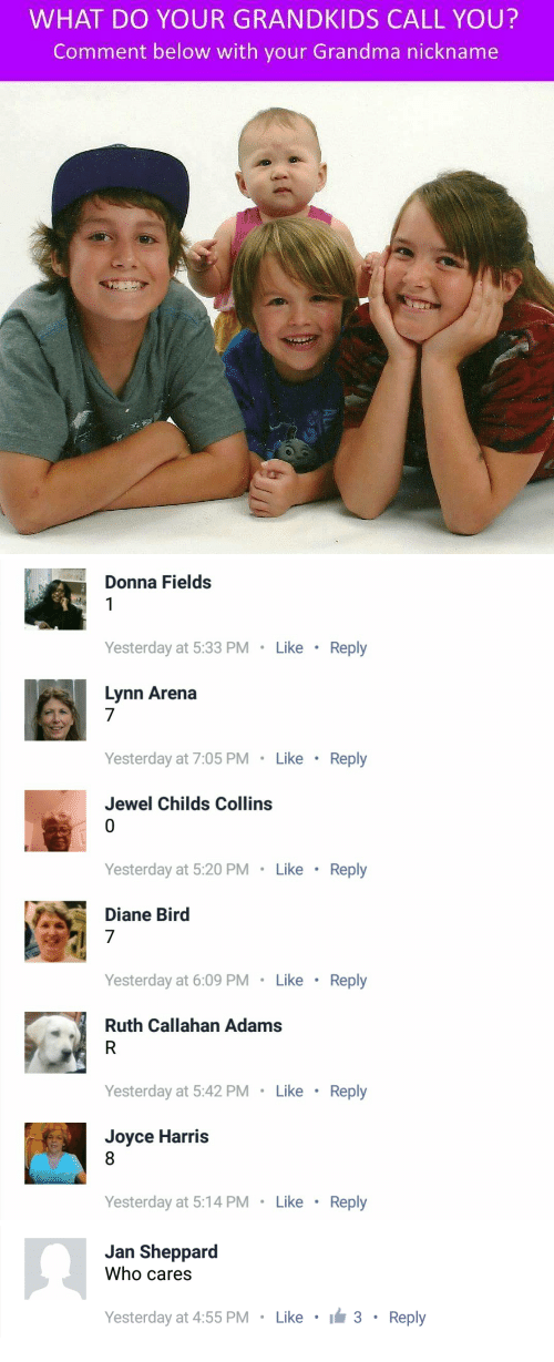 Grandma, Jewel, and Who: WHAT DO YOUR GRANDKIDS CALL YOU?  Comment below with your Grandma nickname   Donna Fields  Yesterday at 5:33 PM  Like  Reply  Lynn Arena  7  Yesterday at 7:05 PM Like Reply  Jewel Childs Collins  Yesterday at 5:20 PM Like  Reply  Diane Bird  7  Yesterday at 6:09 PM Like Reply  Ruth Callahan Adams  Yesterday at 5:42 PM Like Reply  Joyce Harris  Yesterday at 5:14 PM  Like  Reply   Jan Sheppard  Who cares  Yesterday at 4:55 PM Like 3 Reply