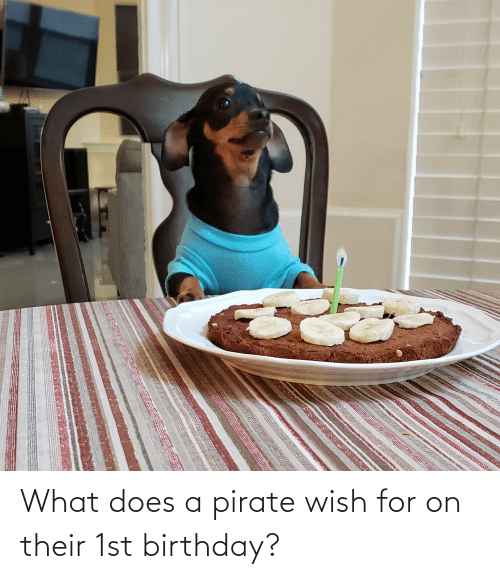 Pirate: What does a pirate wish for on their 1st birthday?