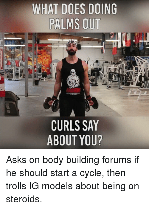 Body Building: WHAT DOES DOING  PALMS OUT  LAI  CURLS SAY  ABOUT YOU? Asks on body building forums if he should start a cycle, then trolls IG models about being on steroids.