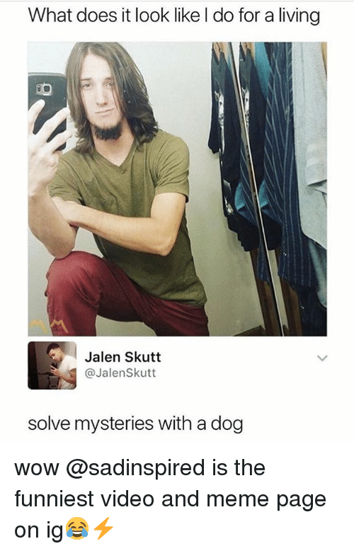 Funny, Meme, and Wow: What does it look like l do for a living  Jalen Skutt  @JalenSkutt  solve mysteries with a dog wow @sadinspired is the funniest video and meme page on ig😂⚡️