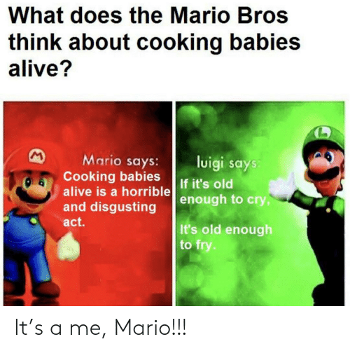 Luigi Says: What does the Mario Bros  think about cooking babies  alive?  M  Mario says:  Cooking babies  alive is a horrible  and disgusting  luigi says:  If it's old  enough to cry,  act.  It's old enough  to fry. It's a me, Mario!!!