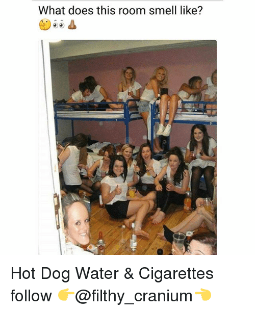 cranium: What does this room smell like? Hot Dog Water & Cigarettes follow 👉@filthy_cranium👈
