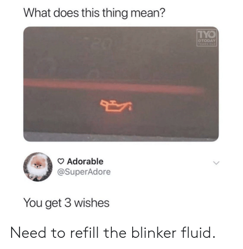 Mean, What Does, and Old: What does this thing mean?  TYO  OTODAY  YEARS OLD  Adorable  @SuperAdore  You get 3 wishes Need to refill the blinker fluid.
