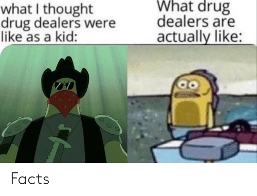 What I Thought: What drug  what I thought  drug dealers were  like as a kid:  dealers are  actually like: Facts