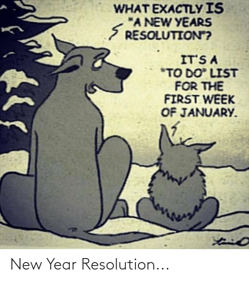 """New Year Resolution: WHAT EXACTLY IS  """"A NEW YEARS  S RESOLUTION?  IT'S A  *TO DO"""" LIST  FOR THE  FIRST WEEK  OF JANUARY. New Year Resolution..."""