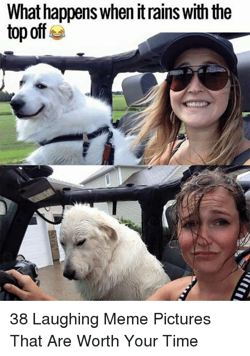 Laughing Meme: What happens when it rains with the  top off 38 Laughing Meme Pictures That Are Worth Your Time