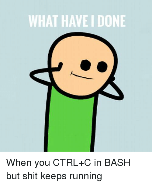 ctrl-c: WHAT HAVE I DONE When you CTRL+C in BASH but shit keeps running