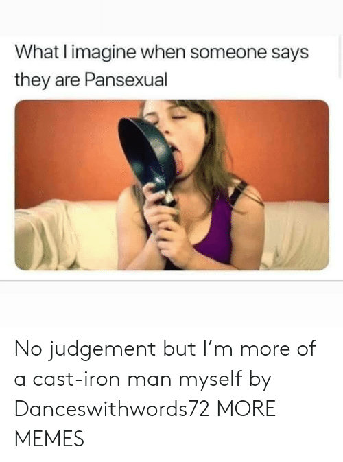 Iron Man: What I imagine when someone says  they are Pansexual No judgement but I'm more of a cast-iron man myself by Danceswithwords72 MORE MEMES