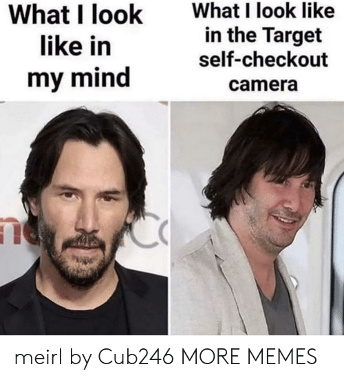 I Look Like: What I look like  in the Target  What I look  like in  self-checkout  my mind  camera meirl by Cub246 MORE MEMES