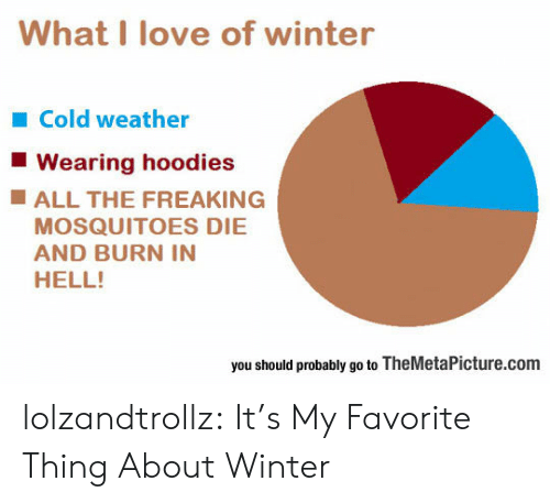 Cold Weather: What I love of winter  Cold weather  Wearing hoodies  ALL THE FREAKING  MOSQUITOES DIE  AND BURN IN  HELL!  you should probably go to TheMetaPicture.com lolzandtrollz:  It's My Favorite Thing About Winter