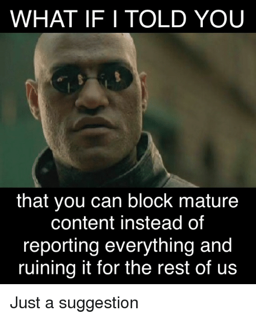 what if i told you: WHAT IF I TOLD YOU  that you can block mature  content instead of  reporting everything and  ruining it for the rest of us Just a suggestion