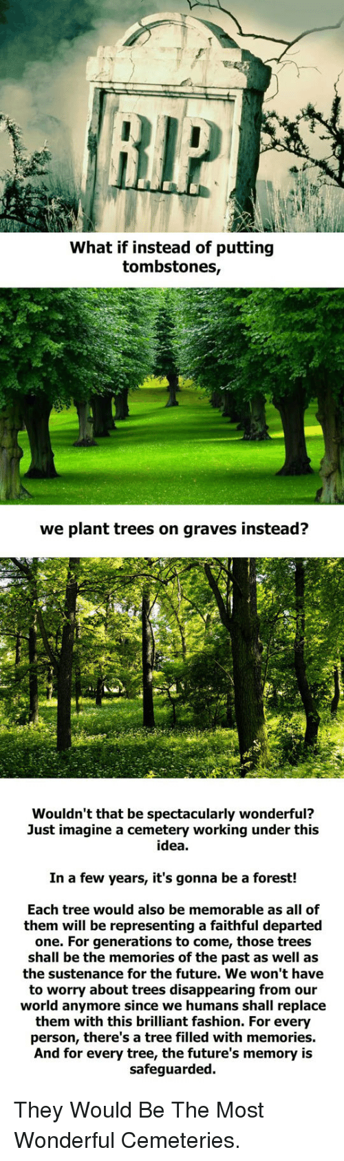 departed: What if instead of putting  tombstones,  we plant trees on graves instead?  Wouldn't that be spectacularly wonderful?  Just imagine a cemetery working under this  idea  In a few years, it's gonna be a forest!  Each tree would also be memorable as all of  them will be representing a faithful departed  one. For generations to come, those trees  shall be the memories of the past as well as  the sustenance for the future. We won't have  to worry about trees disappearing from our  world anymore since we humans shall replace  them with this brilliant fashion. For every  person, there's a tree filled with memories.  And for every tree, the future's memory is  safeguarded. <p>They Would Be The Most Wonderful Cemeteries.</p>
