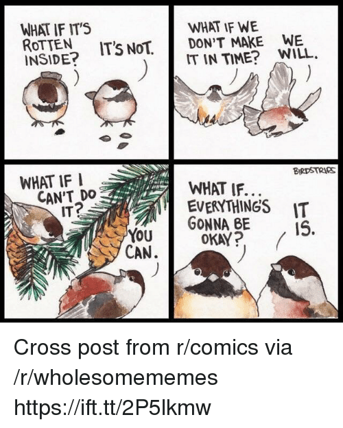 Cross, Okay, and Time: WHAT IF ITS  ROTTEN IT'S NoT.  INSIDE?  WHAT IF WE  DON'T MAKE WE  IT IN TIME? WILL.  WHAT IF I  BIRDSTRIeS  CAN'T DO  ITP  WHAT IF..  EVERYTHINGS IT  Yu GONNA BE  OKAY? (  CAN. Cross post from r/comics via /r/wholesomememes https://ift.tt/2P5lkmw