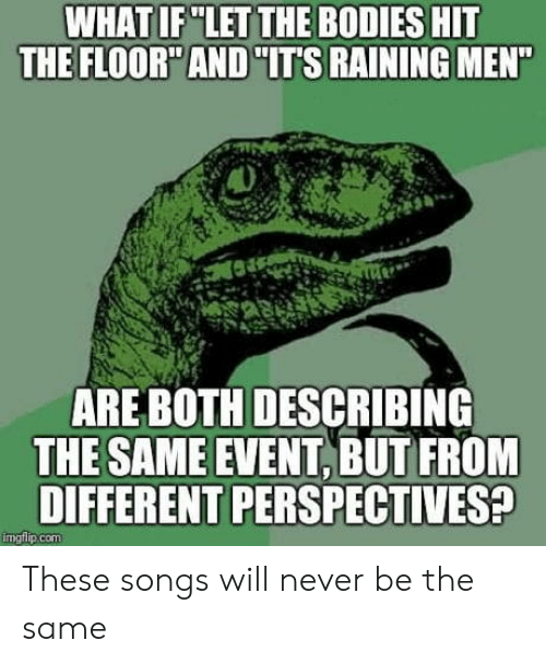 """Bodies , Songs, and Never: WHAT IF """"LET THE BODIES HIT  THE FLOOR AND IT'S RAINING MEN  ARE BOTH DESCRIBING  THE SAME EVENT, BUT FROM  DIFFERENT PERSPECTIVES  mgtlip.COm These songs will never be the same"""