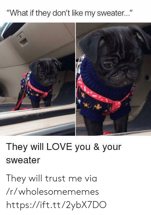"""trust me: """"What if they don't like my sweater..""""  They will LOVE you & your  Sweater They will trust me via /r/wholesomememes https://ift.tt/2ybX7DO"""