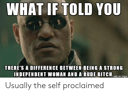 Bitch, Rude, and Strong: WHAT IF TOLD YOU  THERE'S A DIFFERENCE BETWEEN BEING A STRONG  INDEPENDENT WOMAN AND A RUDE BITCH.de mgu Usually the self proclaimed