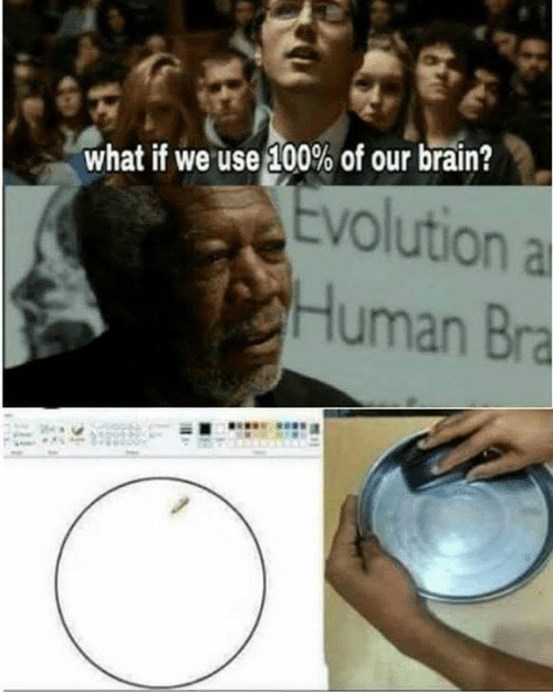 Anaconda, Memes, and Brain: what if we use 100% of our brain?  Evolution a  Human Bra