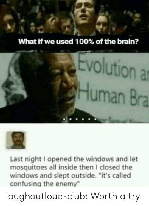 """Club, Tumblr, and Windows: What if we used 1 00% of the brain?  volution ar  Human Bra  Last night I opened the windows and let  mosquitoes all inside then I closed the  windows and slept outside. """"it's called  confusing the enemy laughoutloud-club:  Worth a try"""