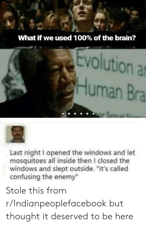 "Windows, Brain, and Evolution: What if we used 100 % of the brain?  Evolution  Human Bra  Last night I opened the windows and let  mosquitoes all inside then I closed the  windows and slept outside. ""it's called  confusing the enemy Stole this from r/Indianpeoplefacebook but thought it deserved to be here"