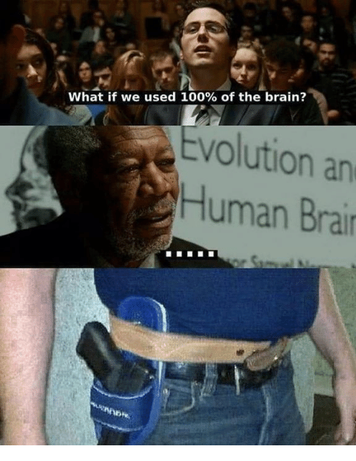 Anaconda, Memes, and Brain: What if we used 100% of the brain?  Evolution an  Human Brar