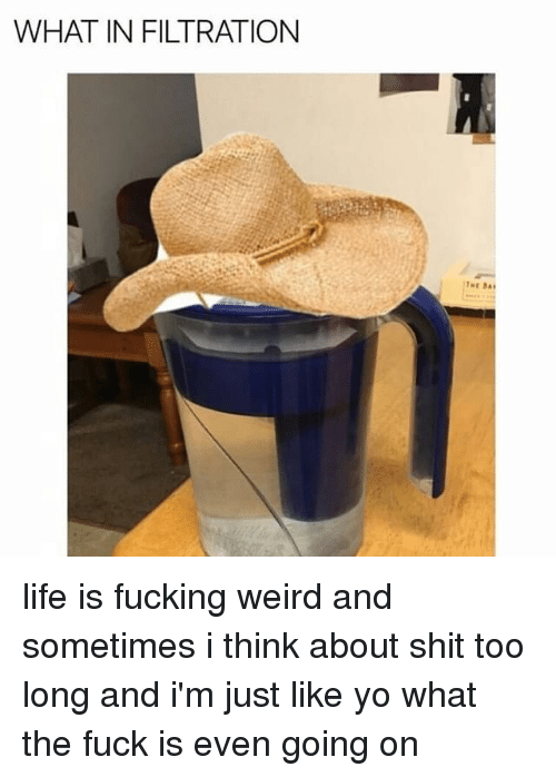 Sometime I: WHAT IN FILTRATION life is fucking weird and sometimes i think about shit too long and i'm just like yo what the fuck is even going on