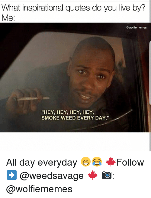 """smoke weed every day: What inspirational quotes do you live by?  Me:  @wolfiememes  """"HEY, HEY, HEY, HEY,  SMOKE WEED EVERY DAY."""" All day everyday 😁😂 🍁Follow ➡ @weedsavage 🍁 📷: @wolfiememes"""