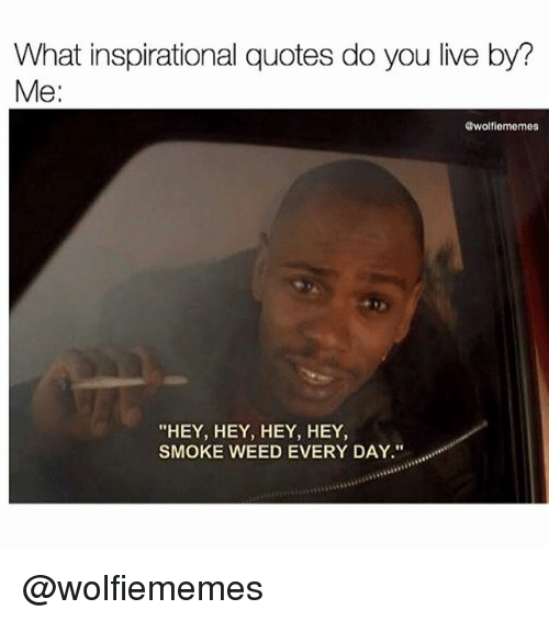 """smoke weed every day: What inspirational quotes do you live by?  Me:  @wolfiememes  """"HEY, HEY, HEY, HEY  SMOKE WEED EVERY DAY."""" @wolfiememes"""