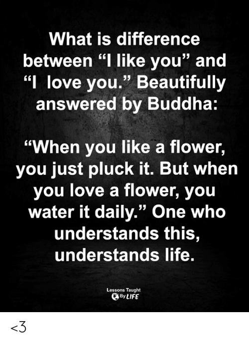 "And I Love You: What is difference  between ""I like you"" and  ""I love you."" Beautifully  answered by Buddha:  ""When you like a flower,  you just pluck it. But when  you love a flower, you  water it daily."" One who  understands this,  understands life.  Lessons Taught  By LIFE <3"