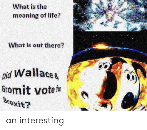 pid: What is the  14  meaning of life?  What is out there?  pid Wallacez  Gromit votef an interesting