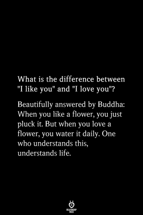 "And I Love You: What is the difference between  ""I like you"" and ""I love you""?  Beautifully answered by Buddha:  When you like a flower, you just  pluck it. But when you love a  flower, you water it daily. One  who understands this,  understands life.  RELATIONSHIP  ES"