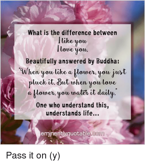 you beauty: What is the difference between  I like you,  lowe you.  Beautifully answered by Buddha  When you like a blower, you just  pluck it. But when you love,  a klouner, you traten it daily  One who understand this  understands life...  eminently quotable co Pass it on (y)