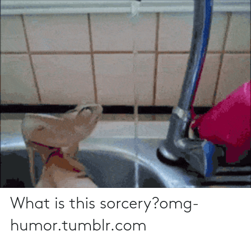 what is this sorcery: What is this sorcery?omg-humor.tumblr.com