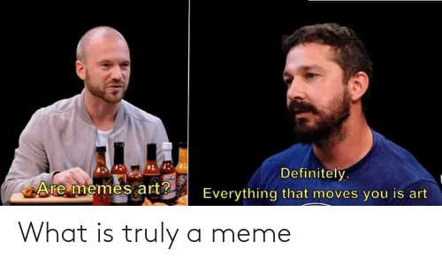 what: What is truly a meme
