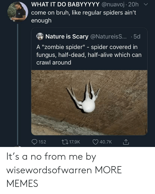 "crawl: WHAT IT DO BABYYYYY @nuavoj 20h  come on bruh, like regular spiders ain't  enough  Nature is Scary @NatureisS... 5d  A ""Zombie spider"" spider covered in  fungus, half-dead, half-alive which can  C  crawl around  117.9K  152  40.7K It's a no from me by wisewordsofwarren MORE MEMES"