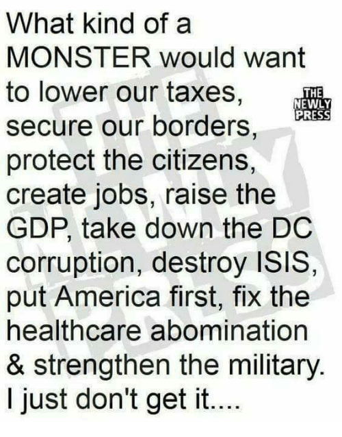 America, Isis, and Memes: What kind of a  MONSTER would want  to lower our taxes,  secure our borders,  protect the citizens,  create jobs, raise the  GDP, take down the DC  corruption, destroy ISIS,  put America first, fix the  healthcare abomination  & strengthen the military.  I just don't get it.  THE  PRESS