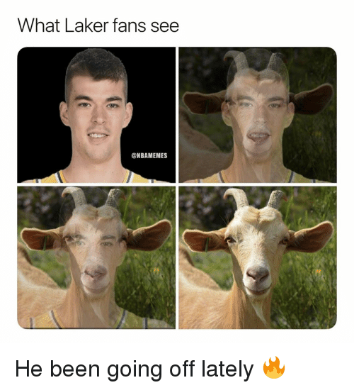going off: What Laker fans see  ONBAMEMES He been going off lately 🔥