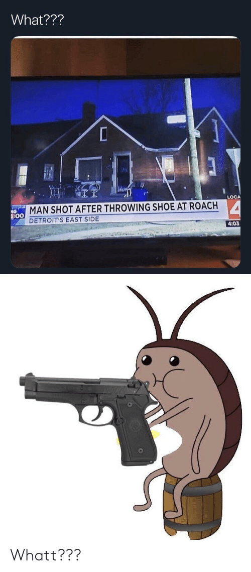 loca: What???  LOCA  MAN SHOT AFTER THROWING SHOE AT ROACH  DETROIT'S EAST SIDE  4:03  0 Whatt???