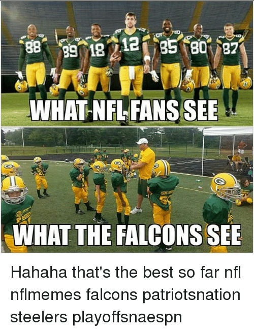nfl fan: WHAT NFL FANS SEE  WHAT THE FALCONS SEE Hahaha that's the best so far nfl nflmemes falcons patriotsnation steelers playoffsnaespn