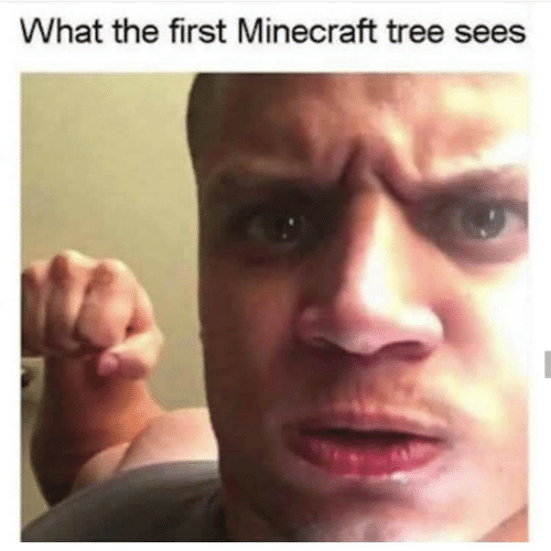 Minecraft, Tree, and First: What the first Minecraft tree sees